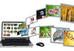 Catégorie Création de sites web
