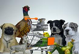 Catégorie Animaux, animalerie