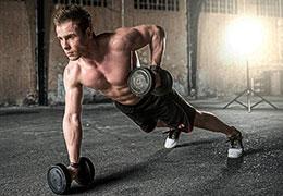Catégorie Musculation