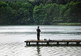 Catégorie Chasse / Pêche
